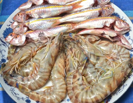 Утренний улов, барбунья и креветки