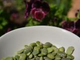 Зеленые бобы и путешествие поКипру